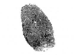 768536-Biometricscopy-1411926764-578-640x480