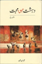 Art and Culture Urdu