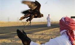 EJ Arab Hunters