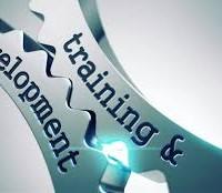 Pemra urged to set up journalist training institute