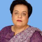 PFUJ, CPNE condemn Sindh journalist's murder